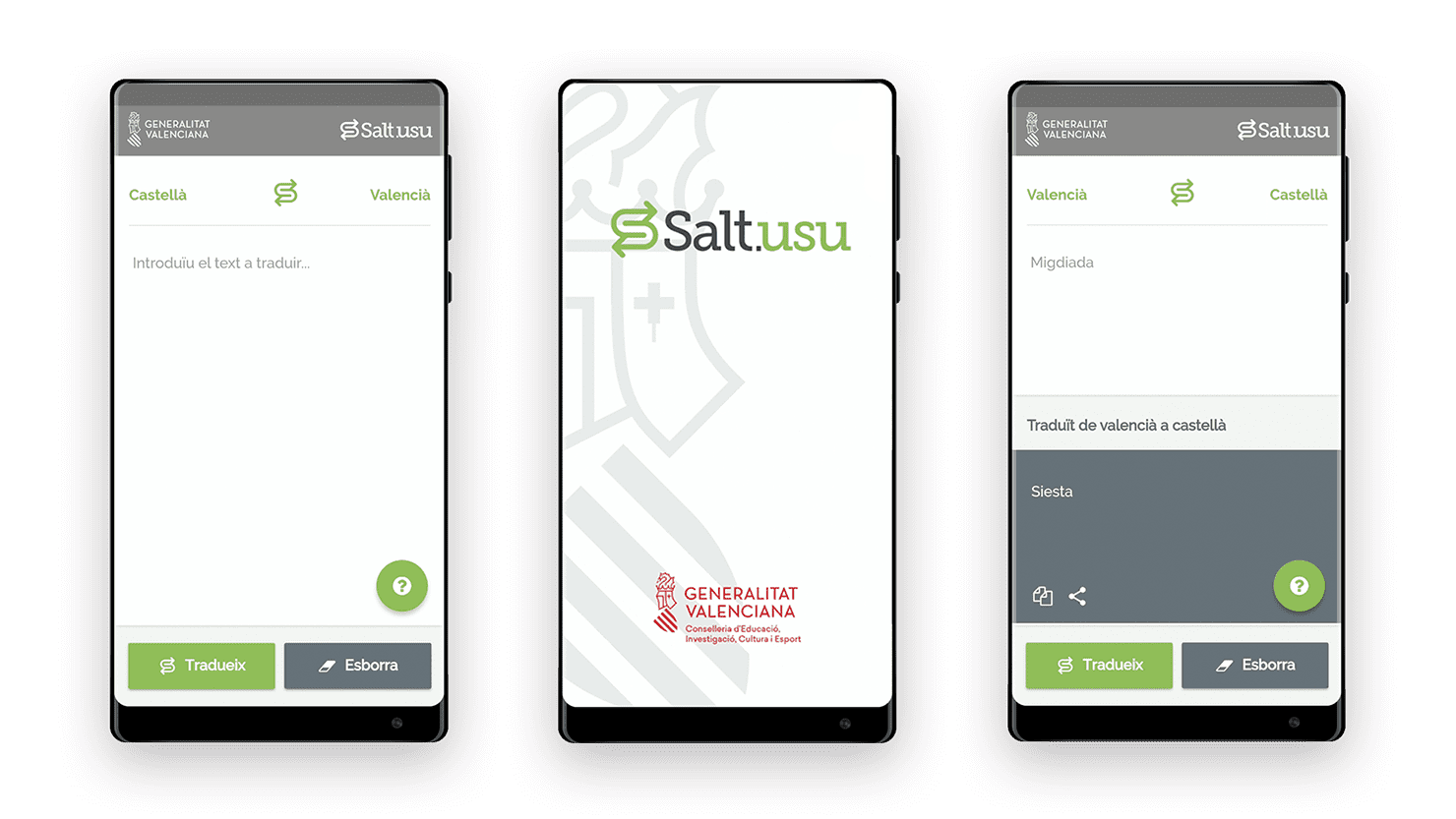 Design and development of Salt translator